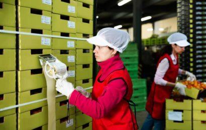 Comment gérer efficacement la logistique de votre entreprise ?